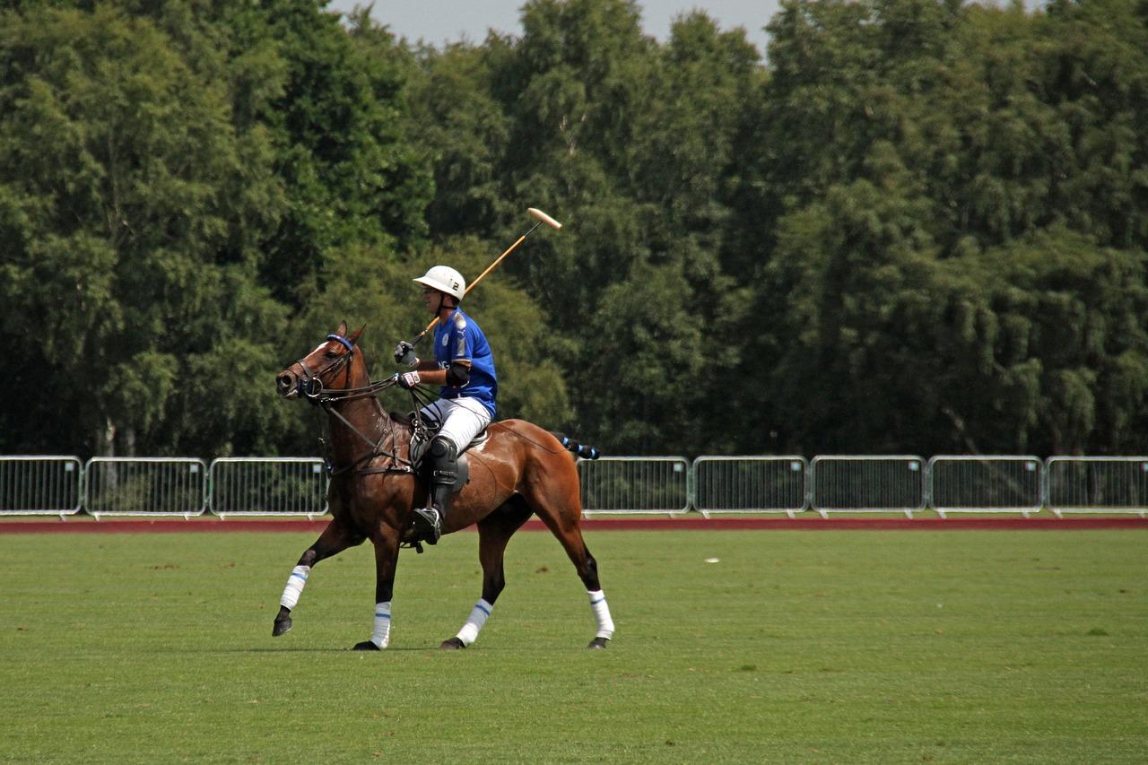 Polo Sporu Nedir? Nasıl Oynanır? Kuralları ve Tarihi Nasıldır?